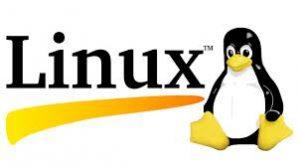 Linux İşletim Sistemi