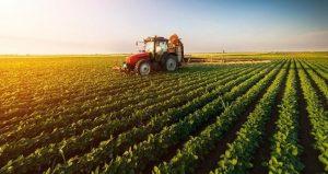 tarımda devlet desteği alma, devlet destekli tarım, devletten destek alarak çiftçilik yapmak